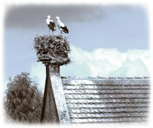 Rühstädt Storchendorf