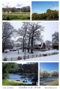 Collage Winter